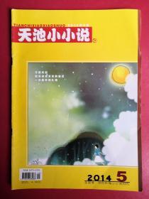 天池小小说2014年第5期