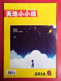天池小小说2014年第6期