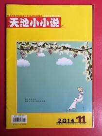 天池小小说2014年第11期