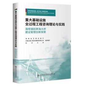重大基础设施全过程工程咨询理论与实践