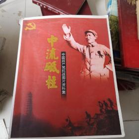 中流砥柱,中国共产党抗战图片资料集