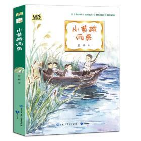 网店不发·中国儿童文学大视野丛书:小英雄雨来(四色)