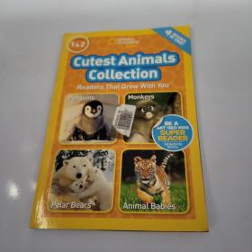 National Geographic Readers: Cutest Animals Collection 国家地理少儿版:最萌动物集选 英文原版