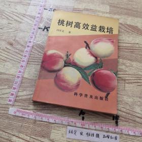 桃树高效益栽培