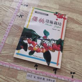 樱桃设施栽培