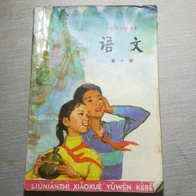 六年制小学课本  语文   第十册