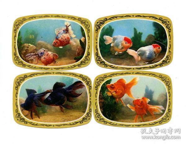 1983年年历卡、年历片—金鱼(全套4枚)
