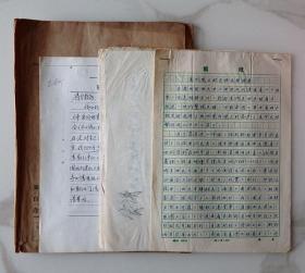 省民委、河南马*宾新乡禹州回族《巴姓民族调查》手稿档案资料3份626#
