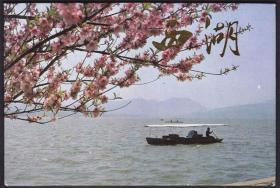 《西湖6》风光美术邮政明信片(10全)省邮电管理局(1985年)