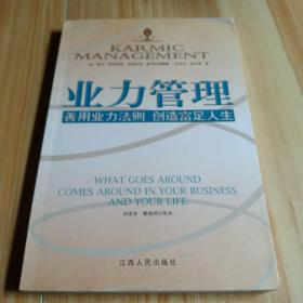 业力管理:善用业力法则 创造富足人生