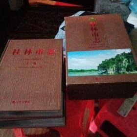 桂林市志上下册(1991-2005)