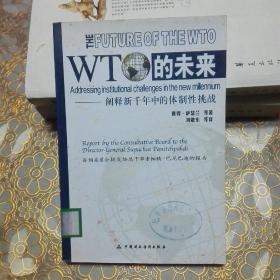 WTO的未来 阐释新千年中的体制性挑战