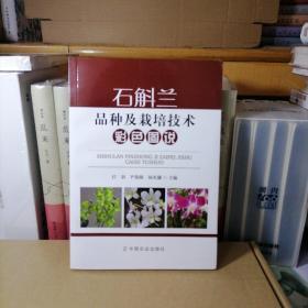 石斛兰品种及栽培技术彩色图说