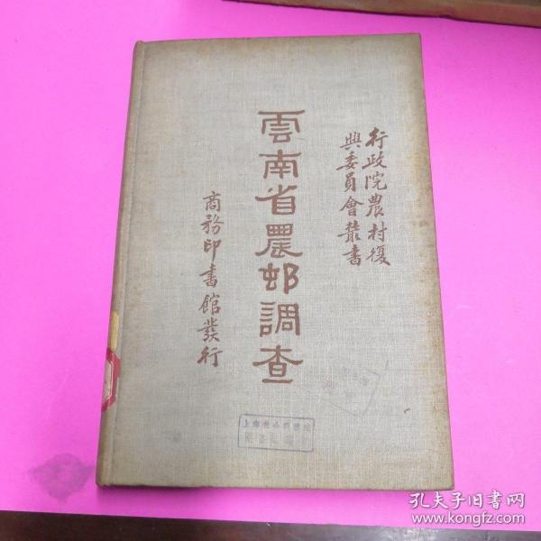 云南省农村调查