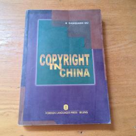 中国知识产权    外文版