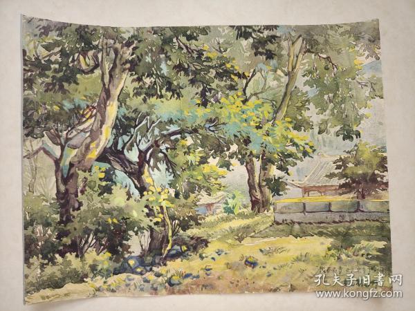 杨振洲    茂林古寺   37厘米X29厘米  软片厚棉纸