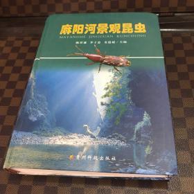 麻阳河景观昆虫