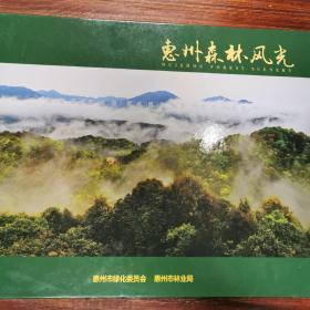 恵州森林风光