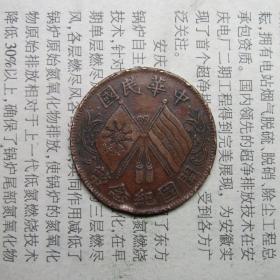 民国铜币  开国十文  连叶纹