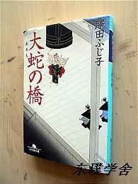【日文原版】大蛇の桥(泽天ふじ子著 幻冬舍文库平成15年初版)