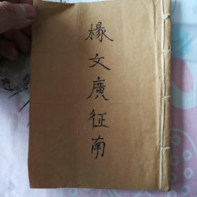 杨文广征南