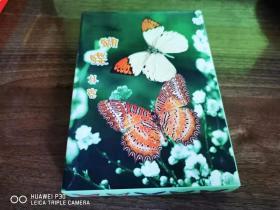 蝴蝶扑克异形