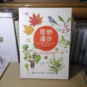 原野漫步:250种植物果实与红叶的手绘自然笔记
