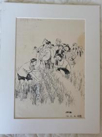 五十年代任之玉插图稿,有出版.