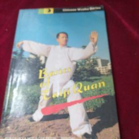 Basics  of  Taiji  Quan