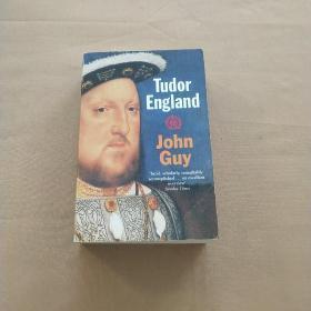 tudor England 英国都铎王朝(英文原版)