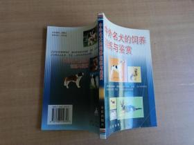 中外名犬的豢养练习与鉴赏【实物拍图 品相自鉴】