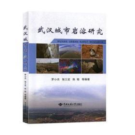 武汉城市岩溶研究  罗小杰 中国地质大学出版社