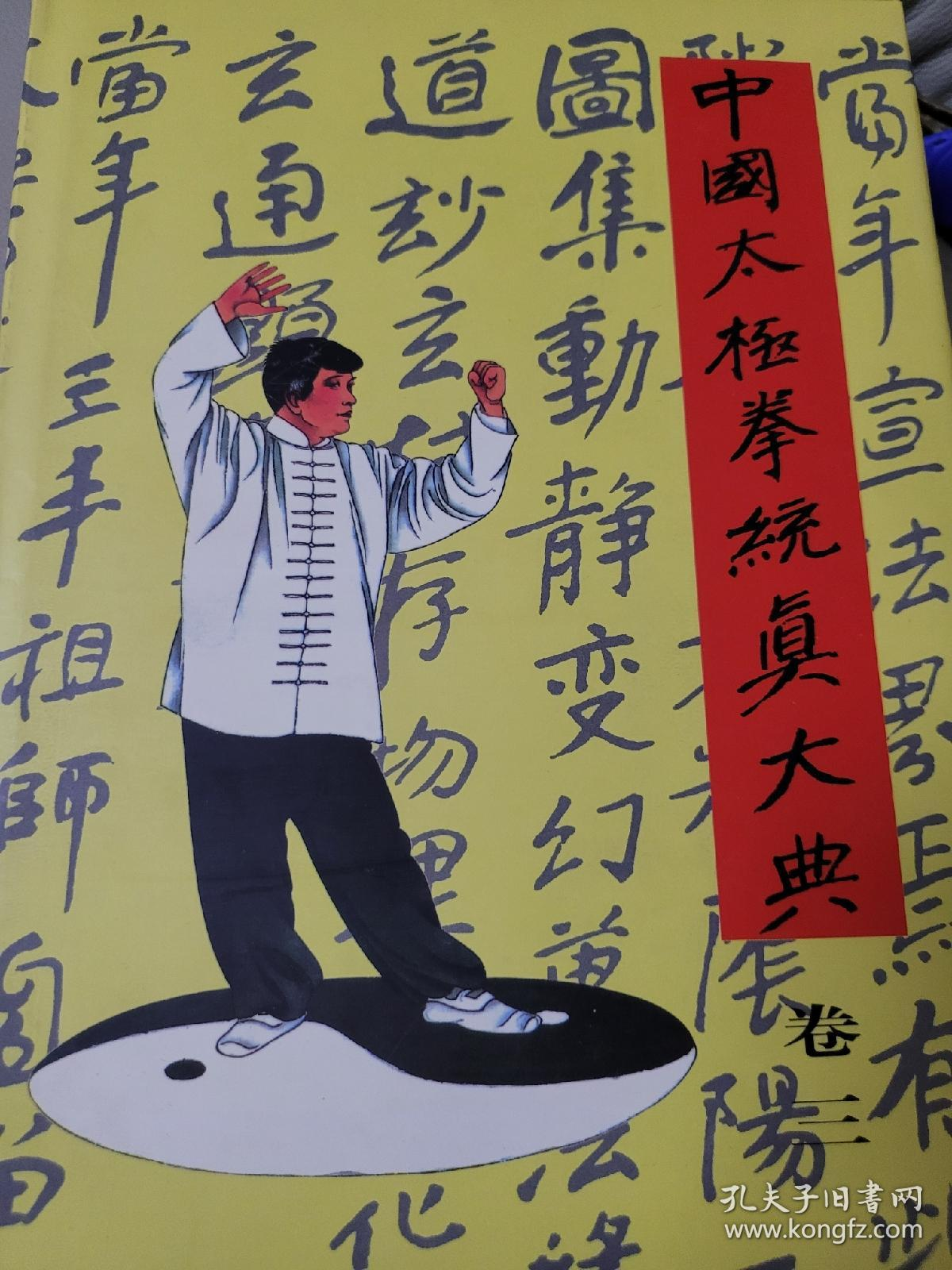 中国太极拳统真大典(3卷)