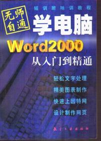 无师自通学电脑 Word 2000 从入门到精通