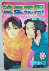 梦幻·爱情,流星花园 33(经典漫画珍藏版)【库存书64开漫画】