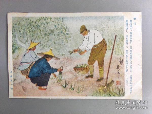 民国日本侵华军邮明信片—植付