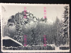 老照片 无六十年代 雪后美景 云南美女 2张 合售