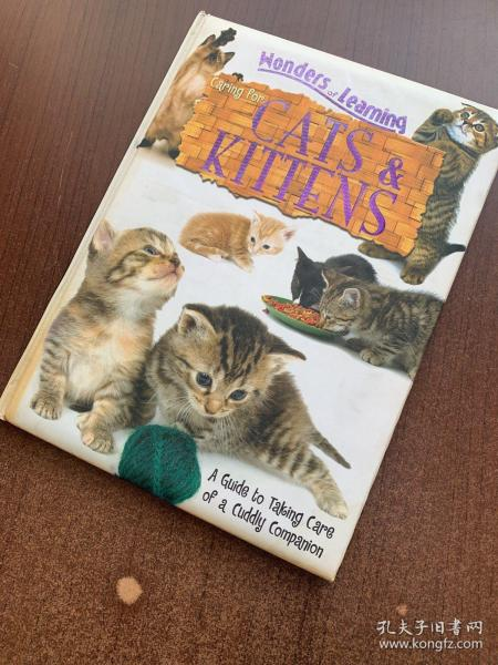 wonders of learning:caring for cats & kittens