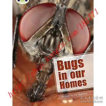 【进口原版】Bug Club Independent Non Fiction Year Two Li...