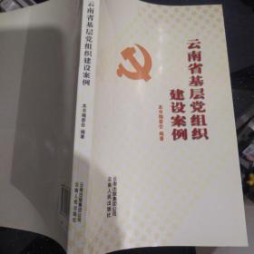云南省基层党组织建设案例