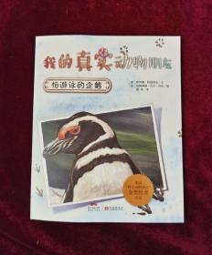 我的真实动物朋友:怕游泳的企鹅