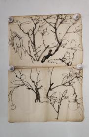回流老字画手绘名家画稿二幅图软片D4704