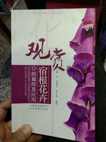 【一版一印彩页版】观赏宿根花卉的栽培及应用  桑林  编著  云南科技出版社9787541641039