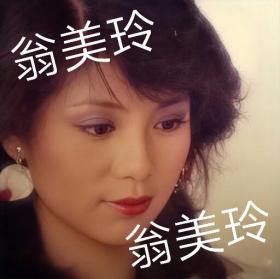 翁美玲香港原版影楼彩色大底片1张!