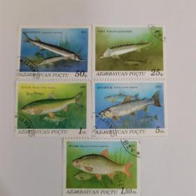 阿塞拜疆邮票  淡水鱼