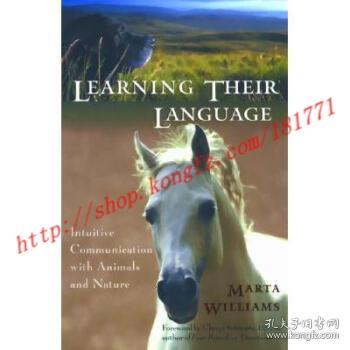 Learning Their Language:Intuitive Communication with Animals and Nature