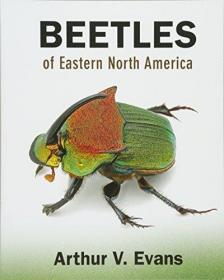 Beetles Of Eastern North America /Arthur V. Evans Princeton