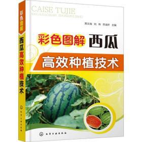 彩色图解西瓜高效种植技术贾文海、刘伟、乔淑芹9787122357830化学工业出版社