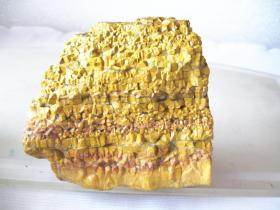 """玛瑙原石,纯天然""""黄金""""玛瑙原石,玛瑙奇石,这块""""黄金""""玛瑙非常稀有,资源即将枯竭,,压手感强,包浆醇厚,沁色自然,皮壳老道,极高收藏价值,可遇不可求的翡翠原石珍品"""