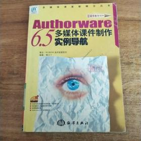 AUTHORWARE6.5多媒体课件制作实例导航——多媒体课堂新概念丛书